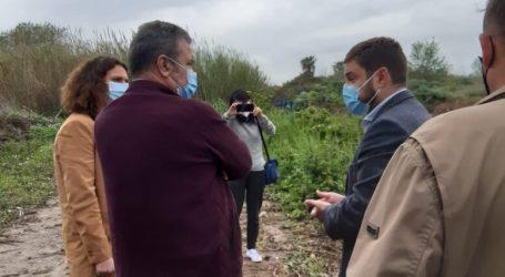 El filtre verd de sanejament de les aigües residuals de La Pobla de Farnals serà integrat en el paisatge de marjal