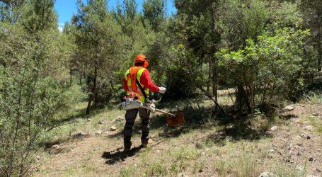 Torrent comienza las tareas de refuerzo de limpieza y desbroce del monte público para reducir el riesgo de incendios