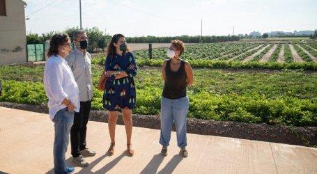 La Conselleria d'Agricultura anuncia a Meliana que impulsarà la formació de futures generacions d'agricultors