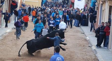 Las peñas esperan que la Generalitat autorice los 'bous al carrer' el día 27
