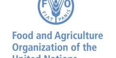 برنامج التدريب الداخلي في منظمة الأغذية و الزراعة للأمم المتحدة FAO | ممولة بالكامل