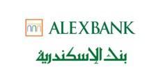 التدريب الصيفى في بنك الاسكندرية Alexbank Summer Internship