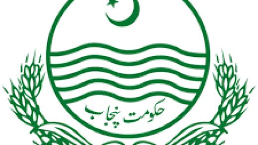 SED logo