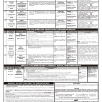 Head Clerk Jobs