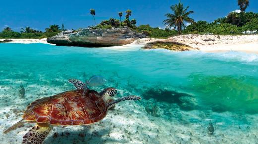 أكبر الجزر في الكاريبي