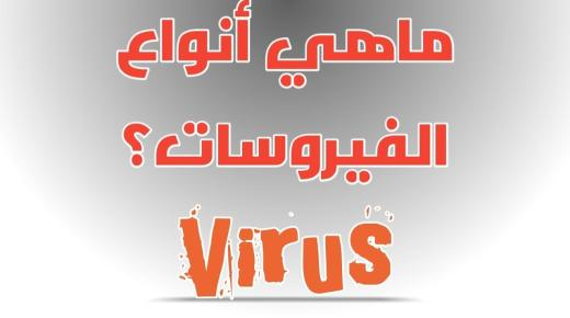 أنواع فيروسات الحاسب
