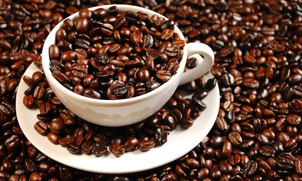 أهم المعلومات عن القهوة