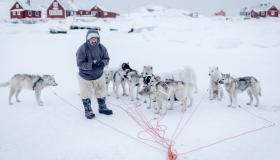 أهم المعلومات عن جزيرة غرينلاند