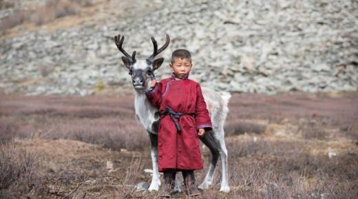 أهم المعلومات عن منغوليا