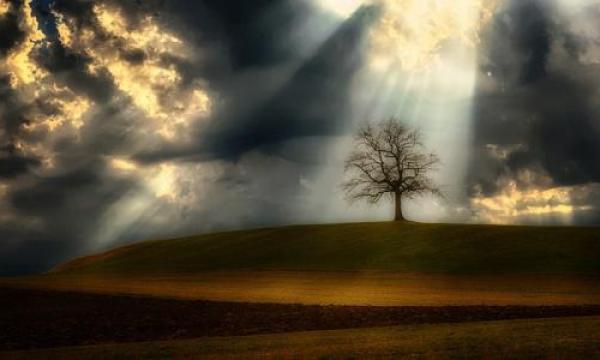 أين نزل آدم عليه السلام وزوجته على الأرض؟