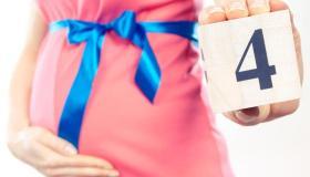 الشهر الرابع من الحمل (الأعراض، وحركة الجنين، ونصائح للحامل)