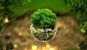 الاحتفال بمناسبة اليوم العالمي للأرض