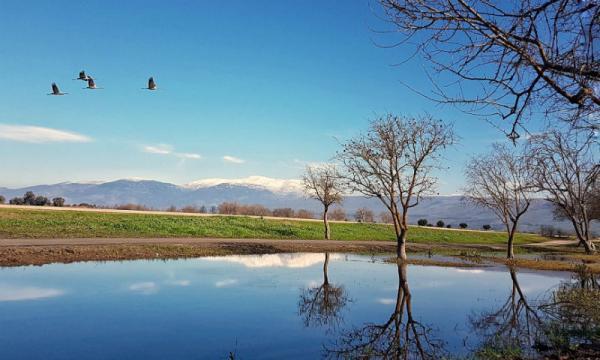 ماذا تعرف عن بحيرة الحولة ؟