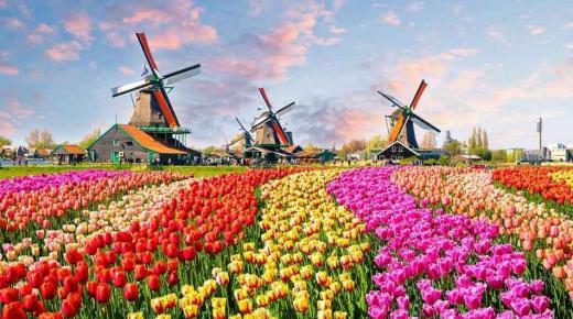 بماذا تشتهر دولة هولندا؟