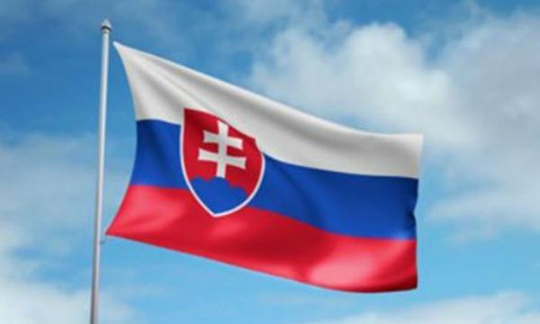 ما معنى ألوان علم سلوفاكيا؟