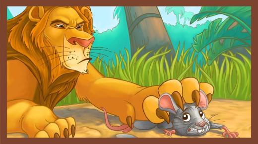 قصة الفأر والأسد حكاية جديدة للأطفال