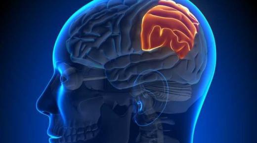 تعرف على أعراض أورام الرأس