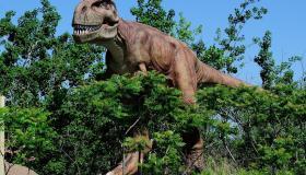 تاريخ الديناصورات .. كل ما تريد معرفته عنها