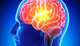 7 طرق هامة لتقوية الذاكرة .. تعرف عليهم