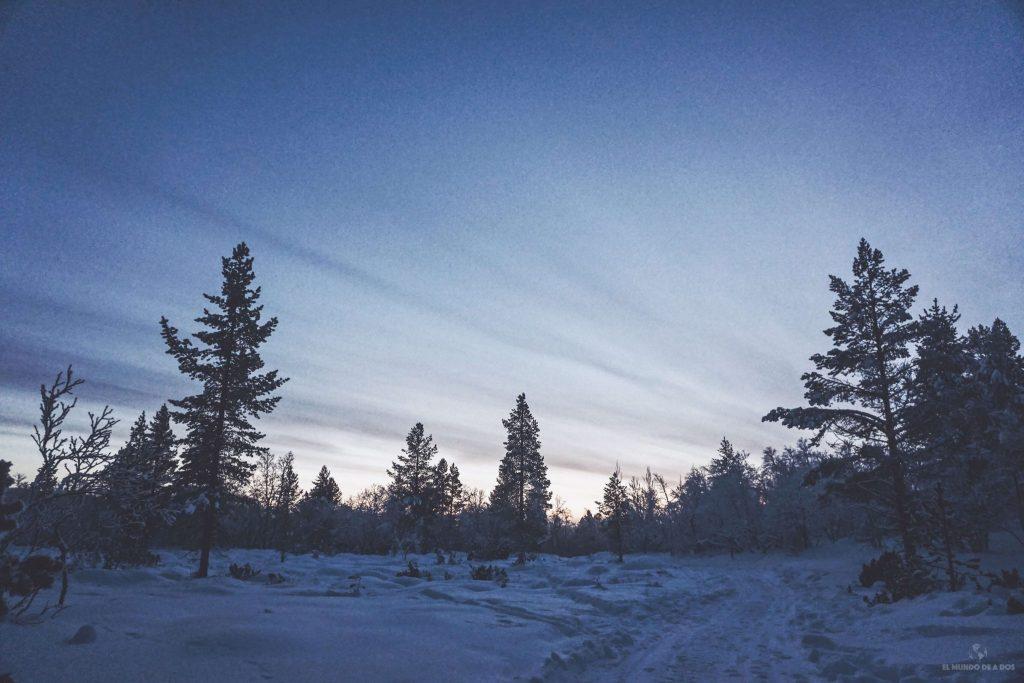 Atardecer. Viajar a Laponia en invierno