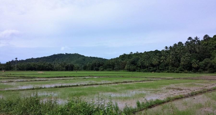 El Nido Filipinas - Paisajes