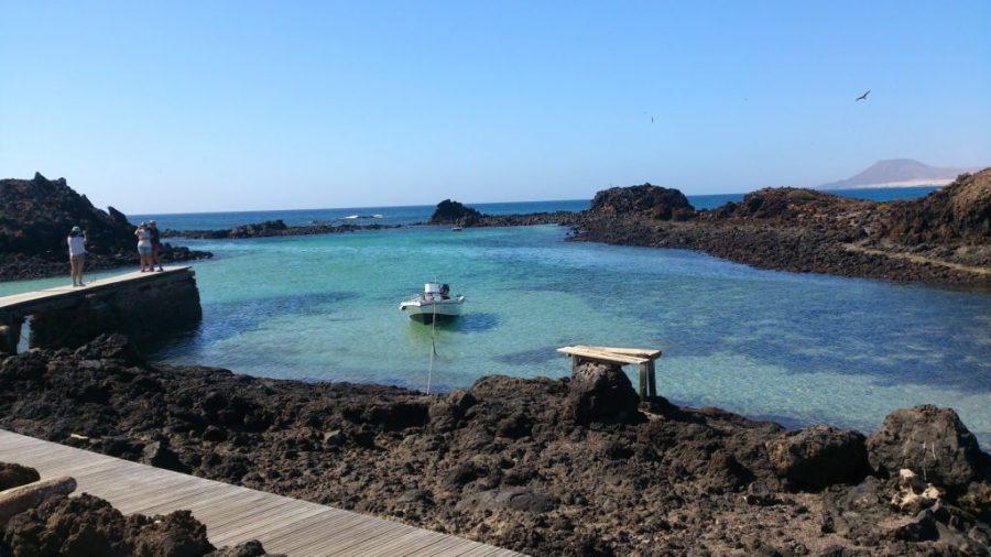 Playas del norte de Fuerteventura - Lobos