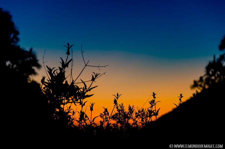 Ruta de Senderismo por el Montañón Negro - Amanecer