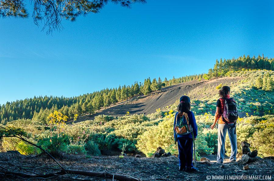 Ruta de senderismo por el Montañon Negro - Laderas de Picón