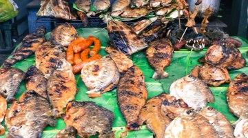 ¿Has probado alguna de las comidas exóticas del mundo? Pasa adelante…