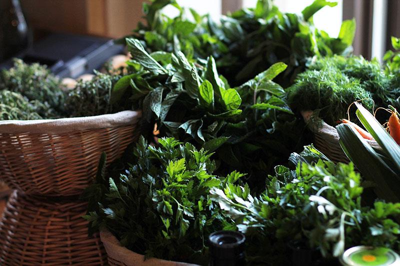 legumes vert