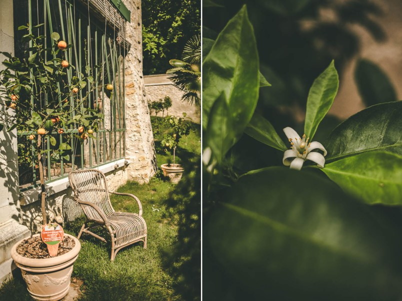 serres fleur d'oranger