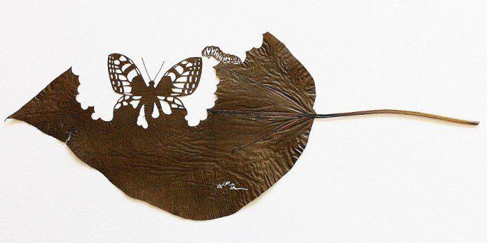 141218 michelangelo 18 cm x 42 cm especie catalpa bignonioides 690x345 Tombent les feuilles