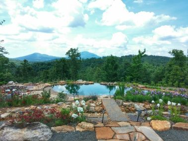Meditation Nature Retreat Georgia Mountains