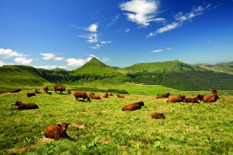 Monts du Cantal paysage