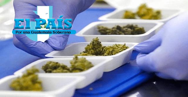 marihuana por vacunarse