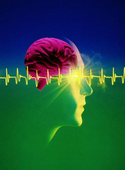 https://i1.wp.com/www.elpais.com/recorte/20081124elpepunet_1/LCO340/Ies/IBM_ha_anunciado_investigando_desarrollo_circuitos_electronicos_similares_cerebro.jpg