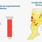 Santa Fe entre una de las provincias más exportadoras de miel