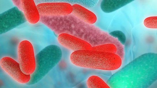 Can Gut Bacteria Unlocking Rheumatoid Arthritis?