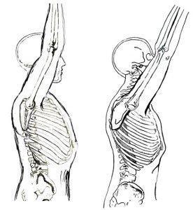blog de imágenes de ilustración de los brazos de recaudación humanos