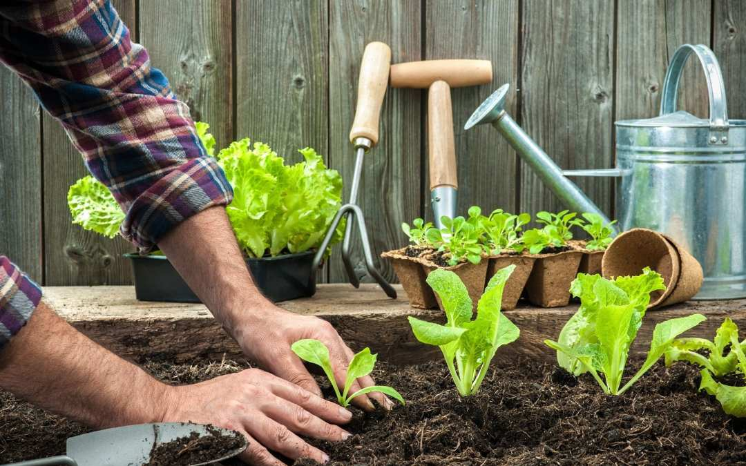 Avoiding Aches & Pains from Spring Gardening