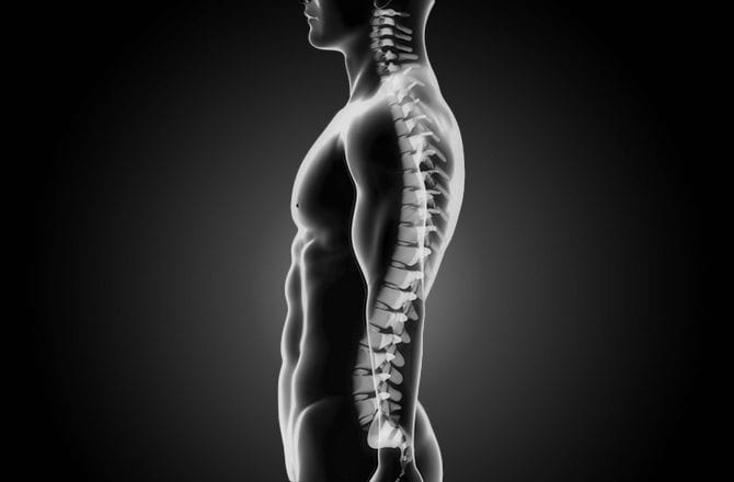 How Chiropractic Treatment Helps Posture