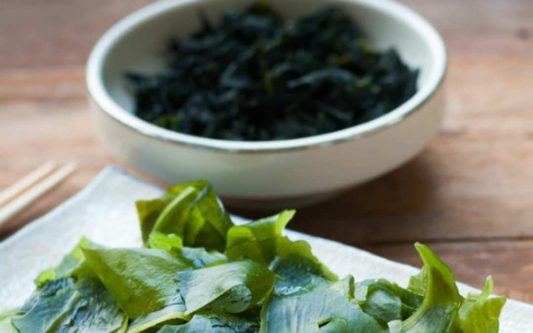Benefit of Seaweed for Heart Health   Wellness Clinic