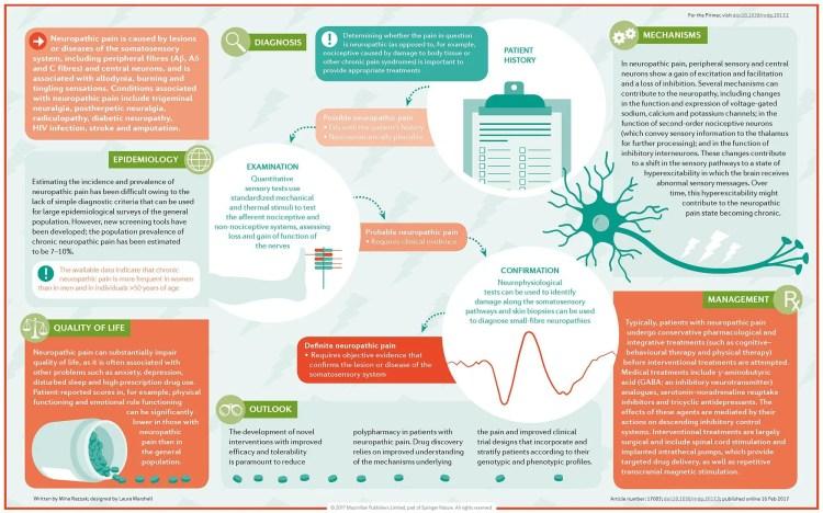 Diagrama de Dor Neuropática | El Paso, TX Chiropractor