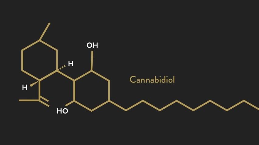 Apoyo al sistema endocannabinoide | El Quiropráctico El Paso, TX