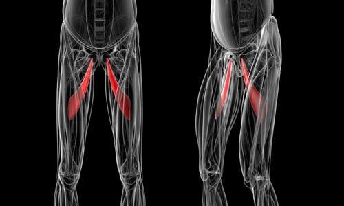 Athletic Pubalgia Mechanism of Injury