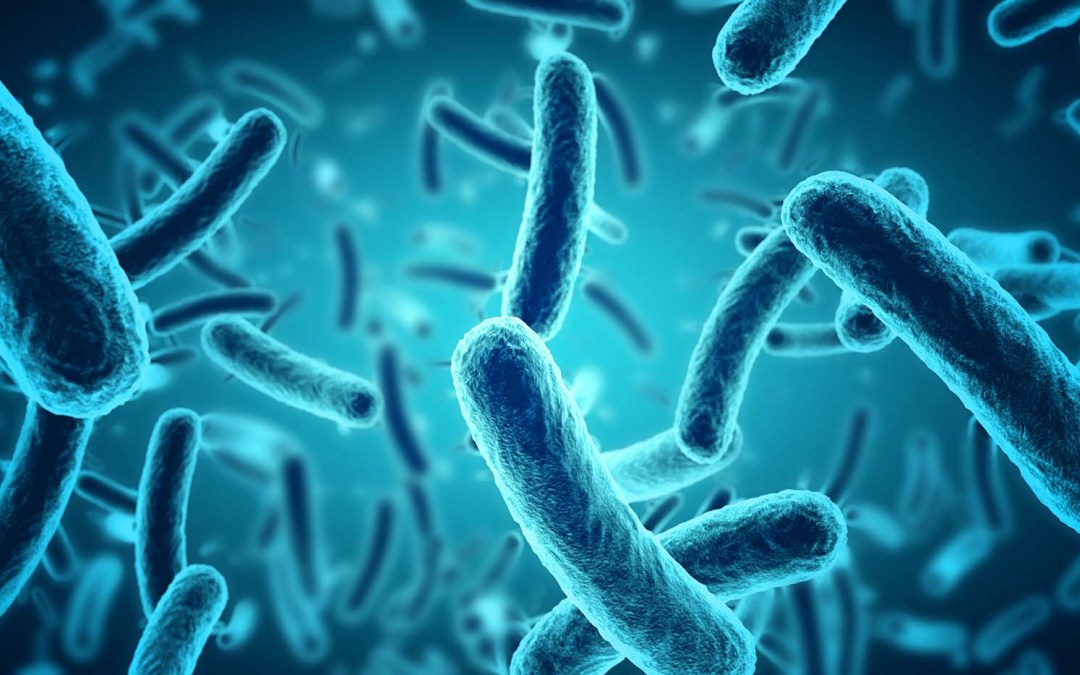 The Role Of The Microbiome In DNA Methylation