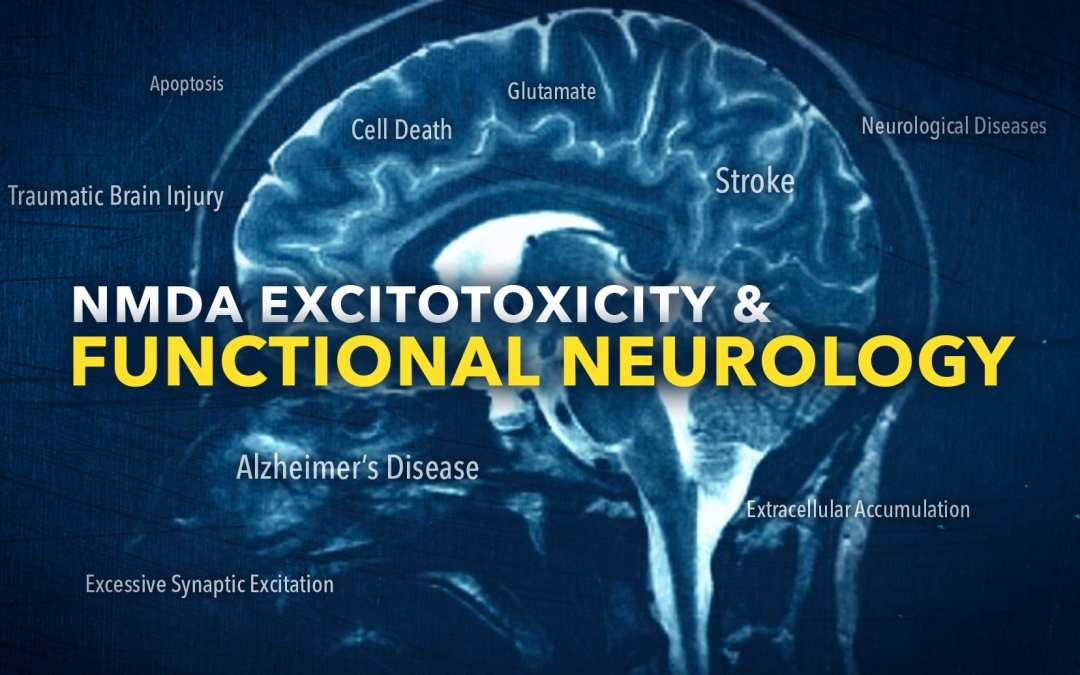 NMDA Excitotoxicity in Functional Neurology