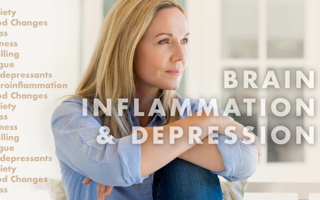 Functional Neurology: Brain Inflammation and Depression