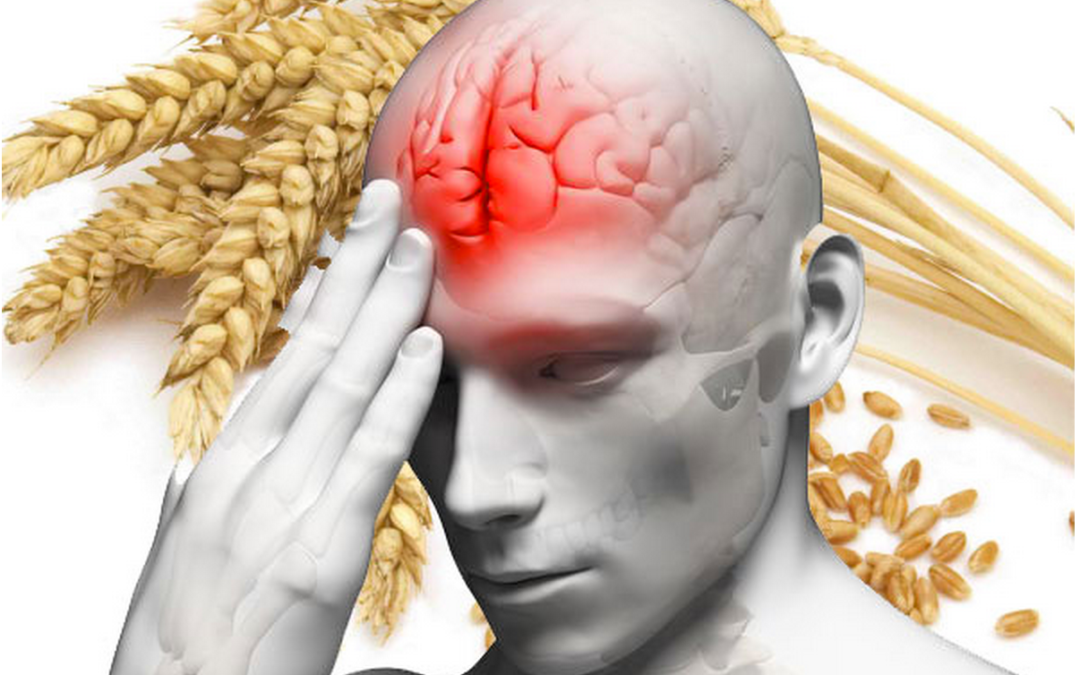 Functional Neurology: Gluten-Related Brain Health Issues