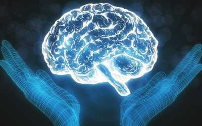 Functional Neurology: Metabolic Syndrome and Mental Health Issues